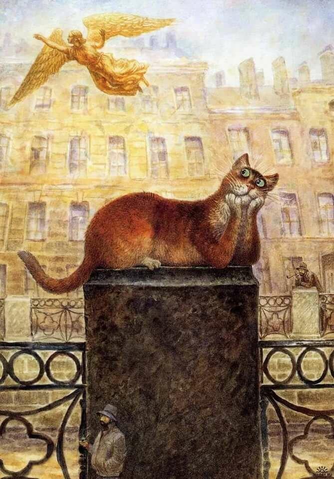 Петербургские коты картинки