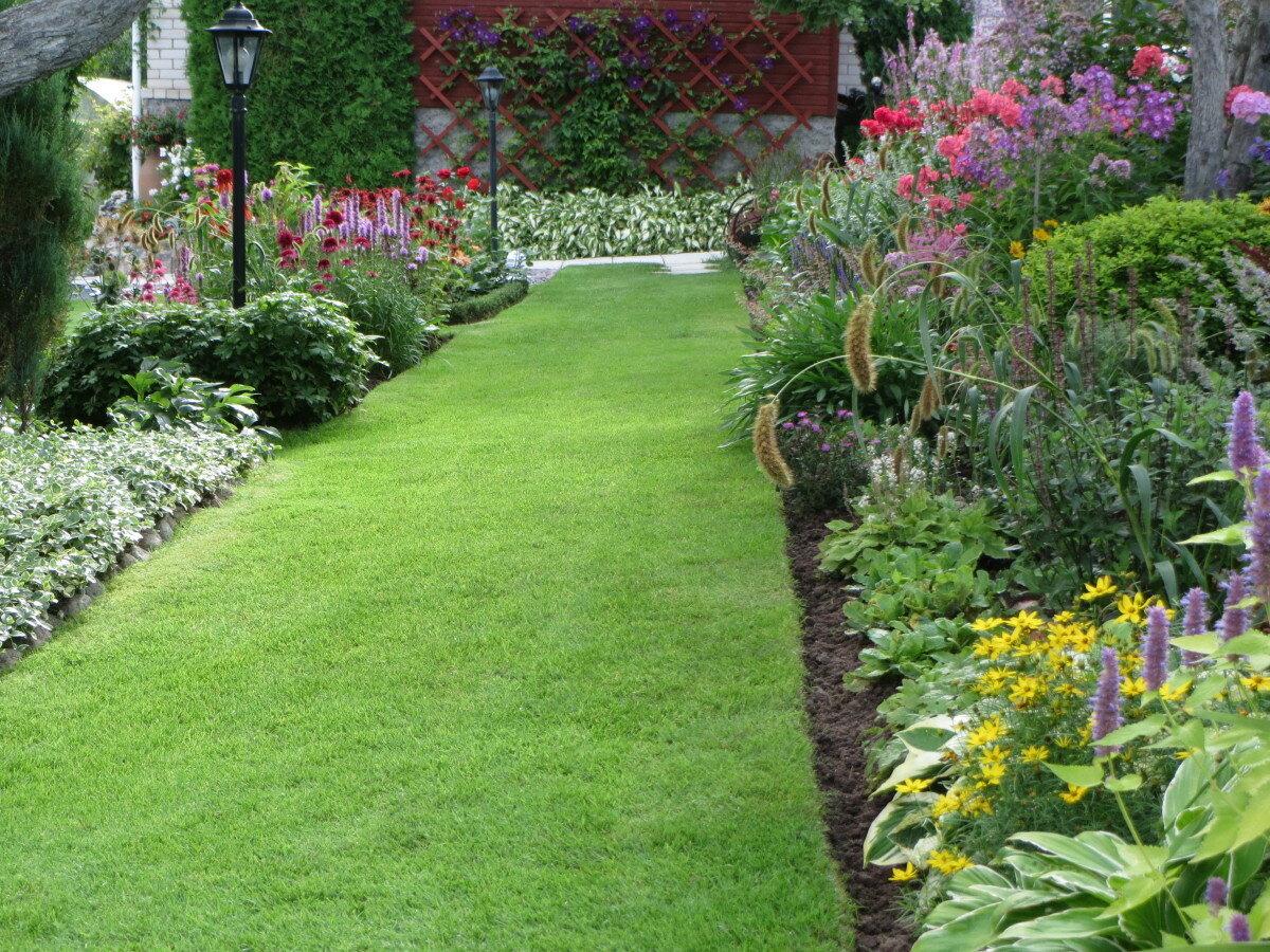 фото садовых дорожек и цветочных клумб друзей