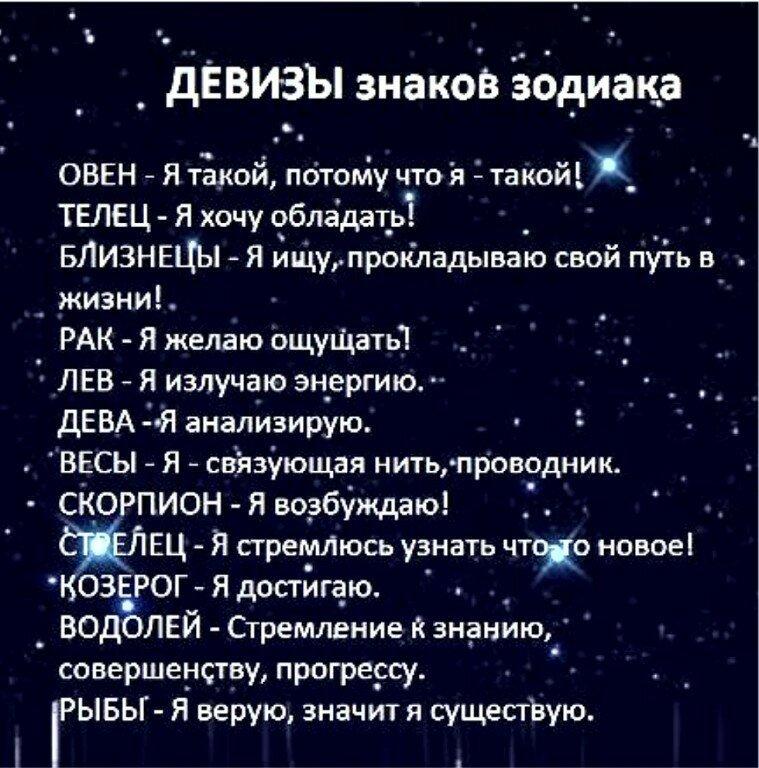 Приколы картинки гороскопы
