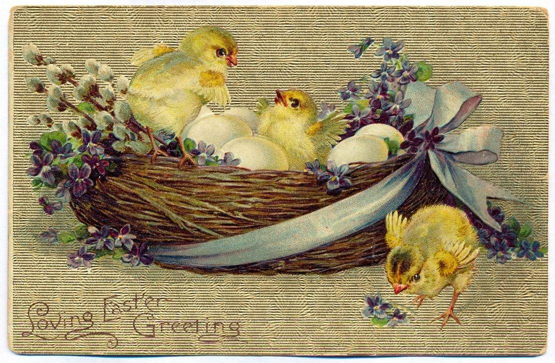 Открытка картинка, открытка пасха цыпленок