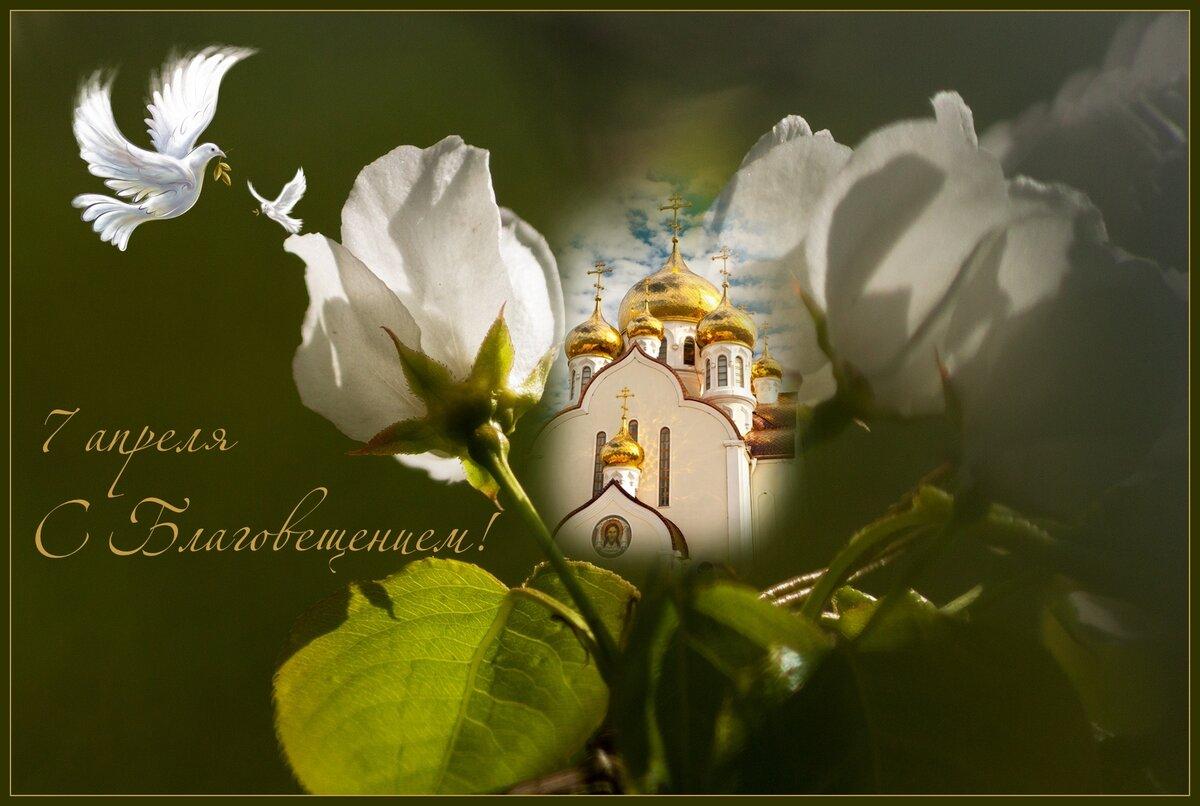 Фото открытки с благовещением, самые наилучшие пожелания