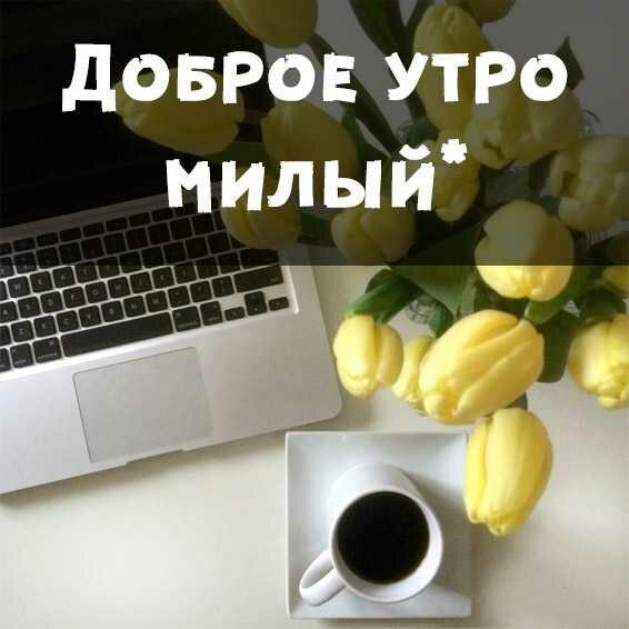 доброе утро милый любимый друг картинки тарасов