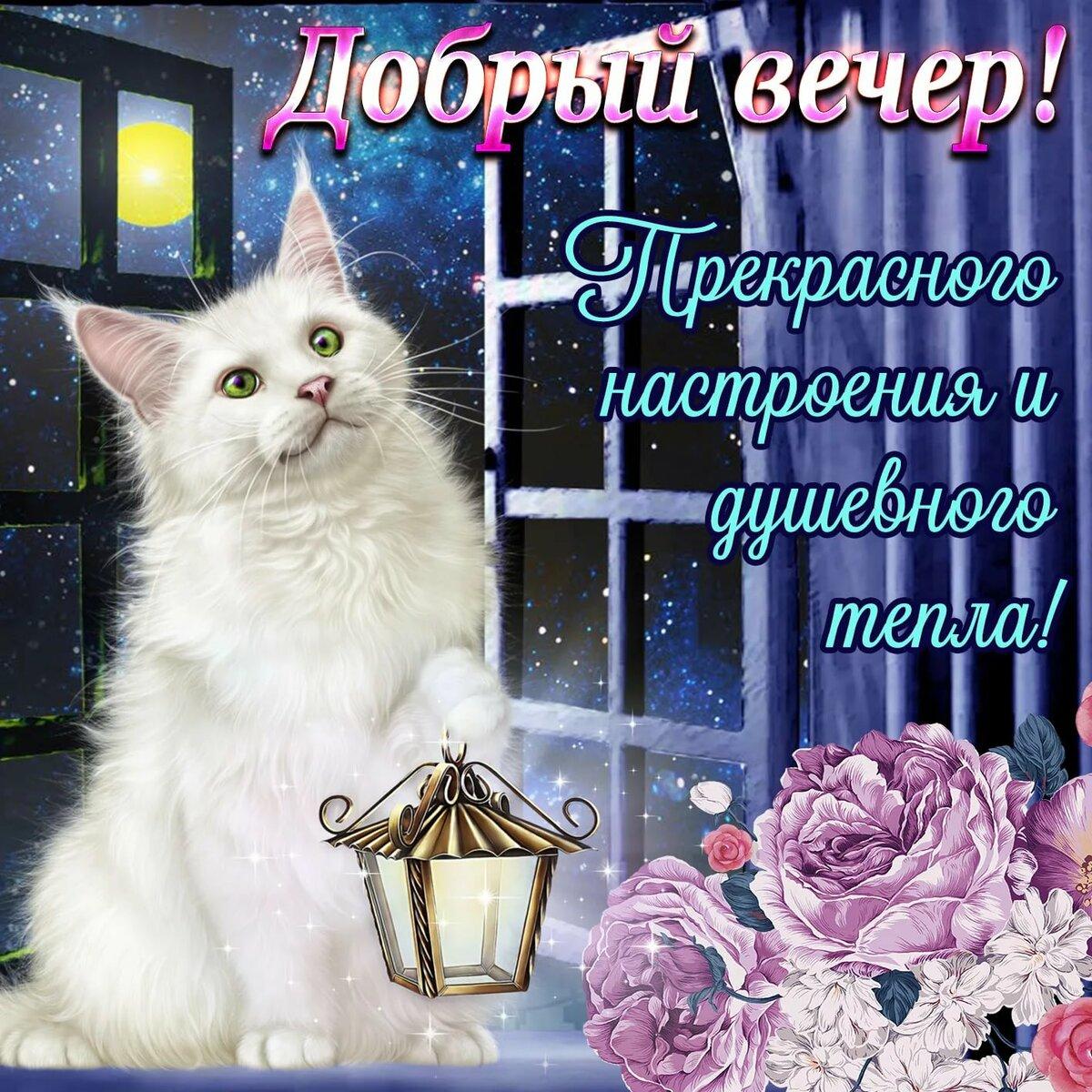 Красивые открытки с пожеланием добрый вечер