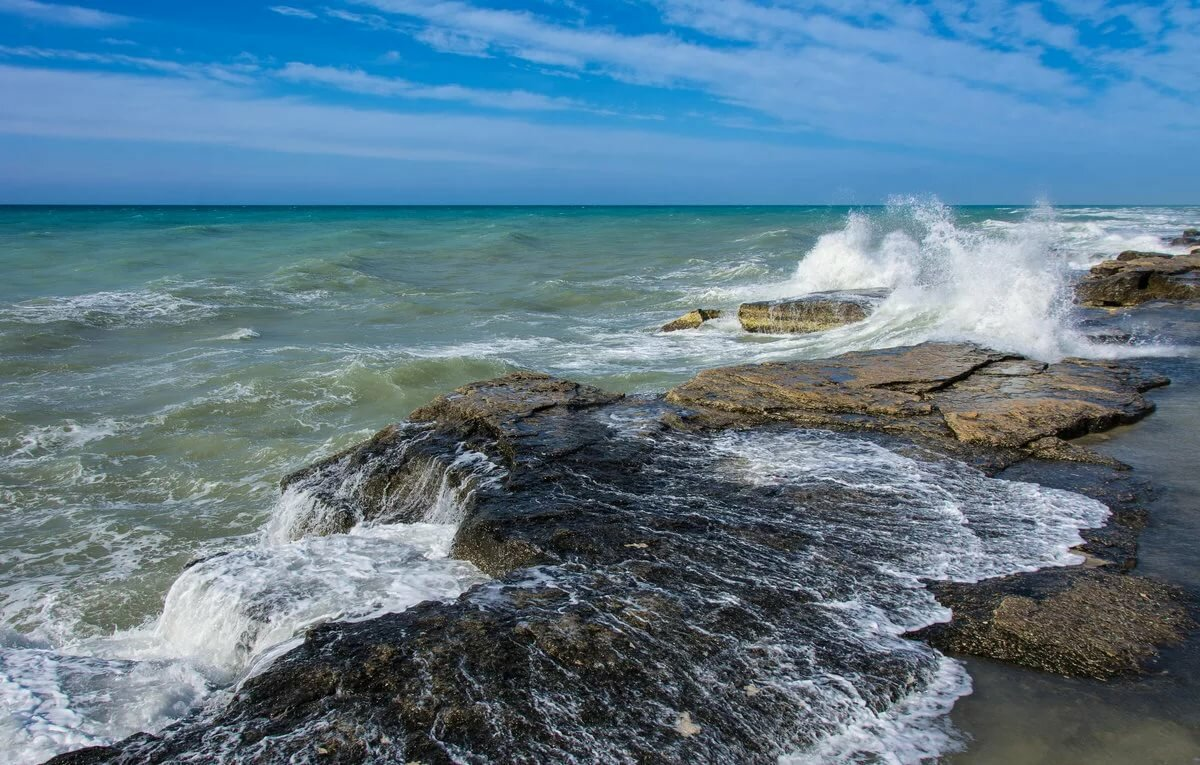 заботой моря фото и названия девочкой