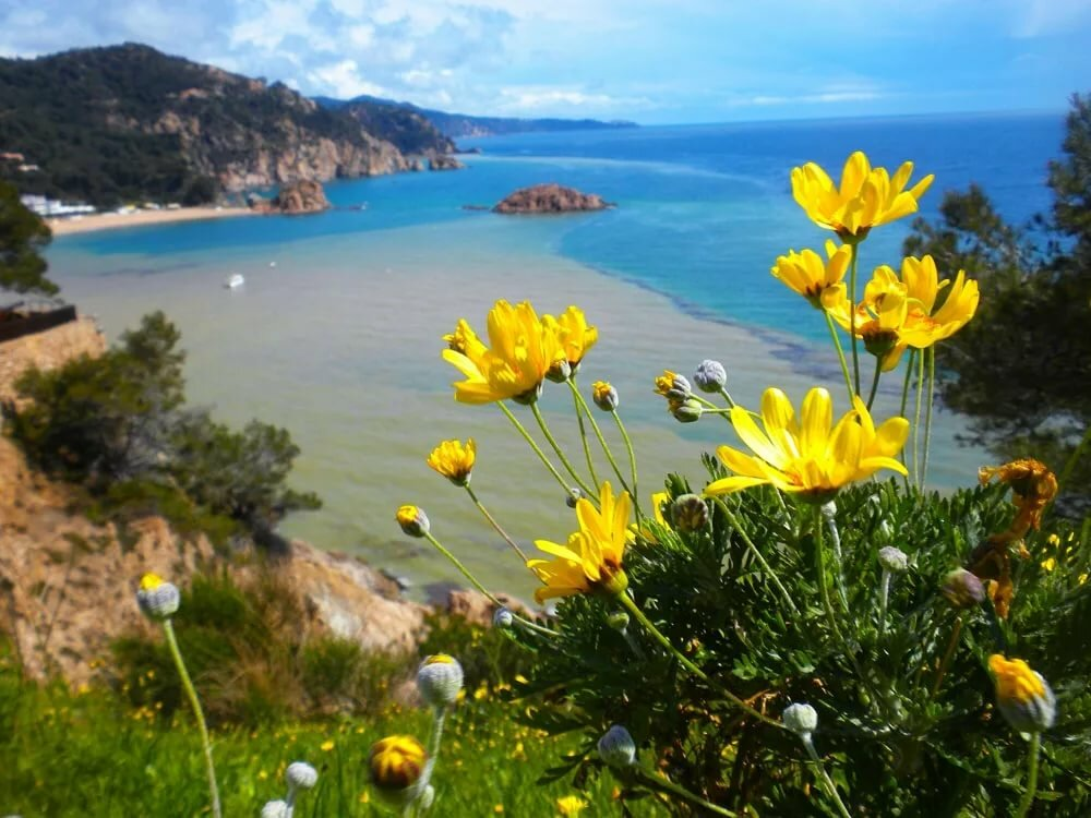 картинки весенняя природа средиземноморье этой коллекции