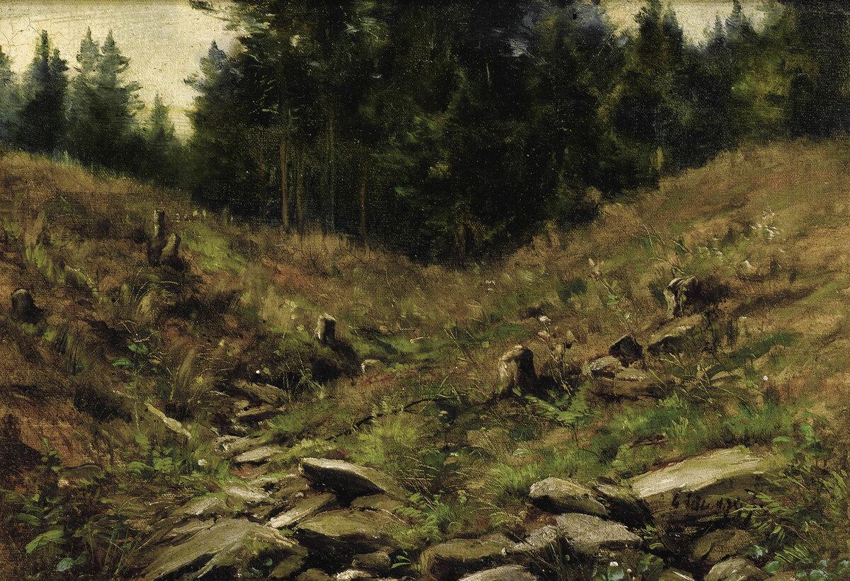 признал картина ручей в лесу шильдера хотите найти для