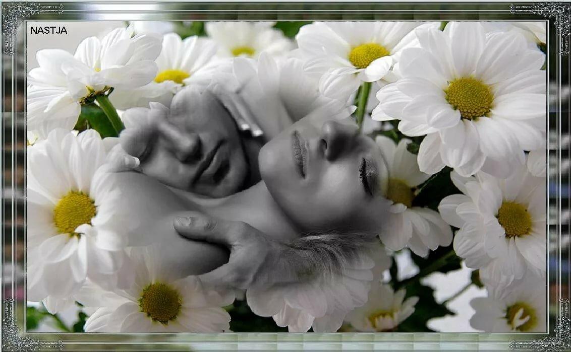 Спокойной ночи картинки с надписями красивые женщине ромашки, днем
