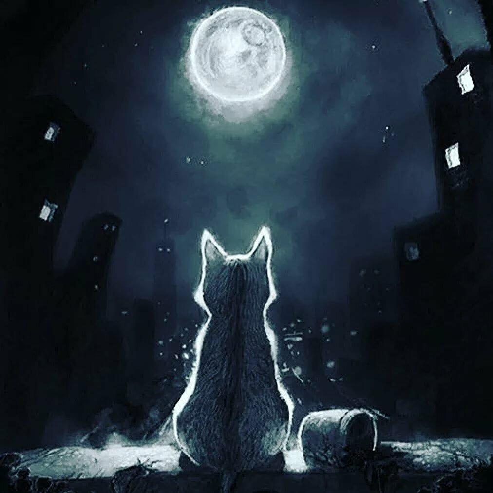 Картинка сказочных сновидений