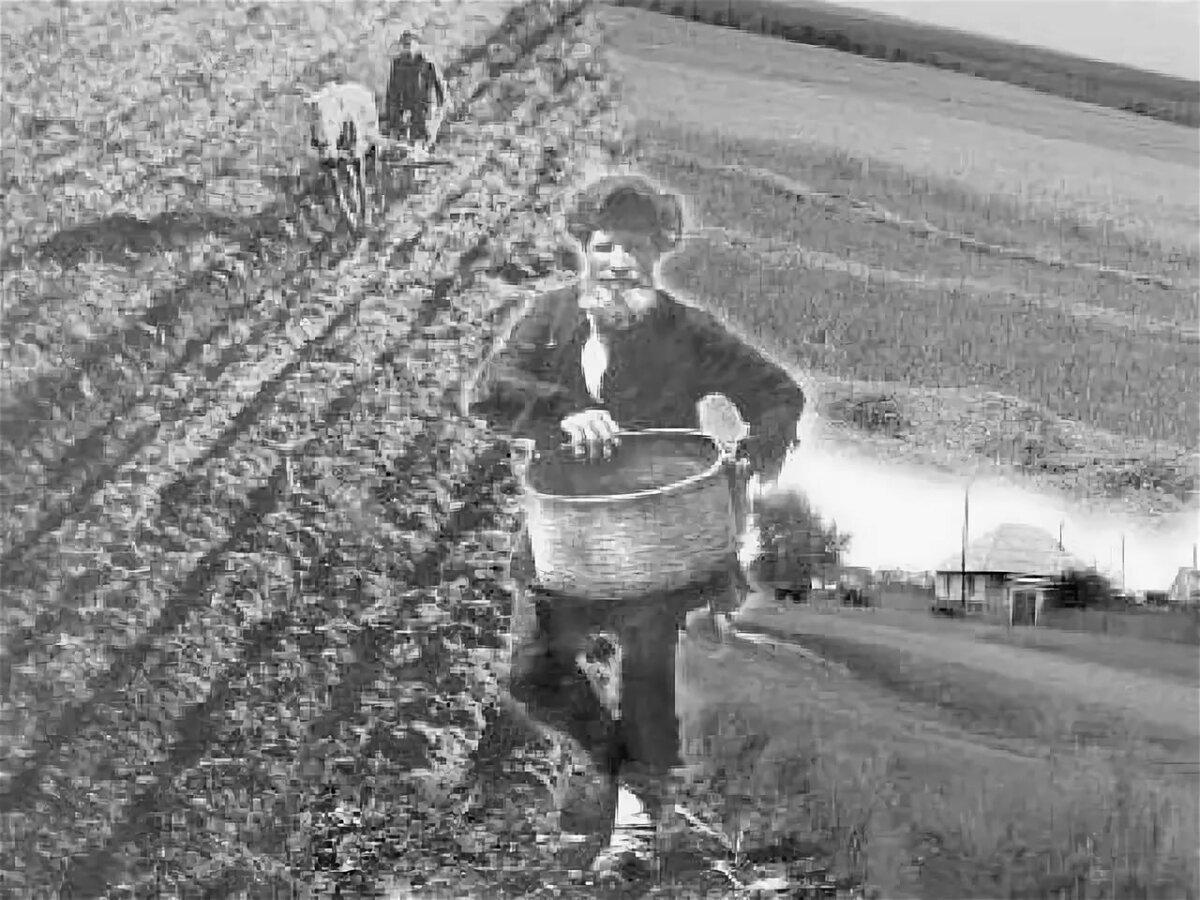 Картинки по аграрной реформе