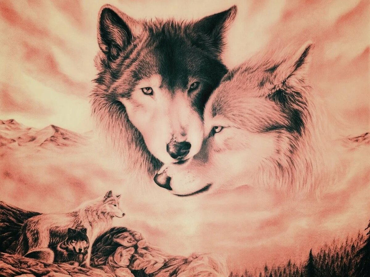 всегда картинки с волками с чем-нибудь успели любимцы публики