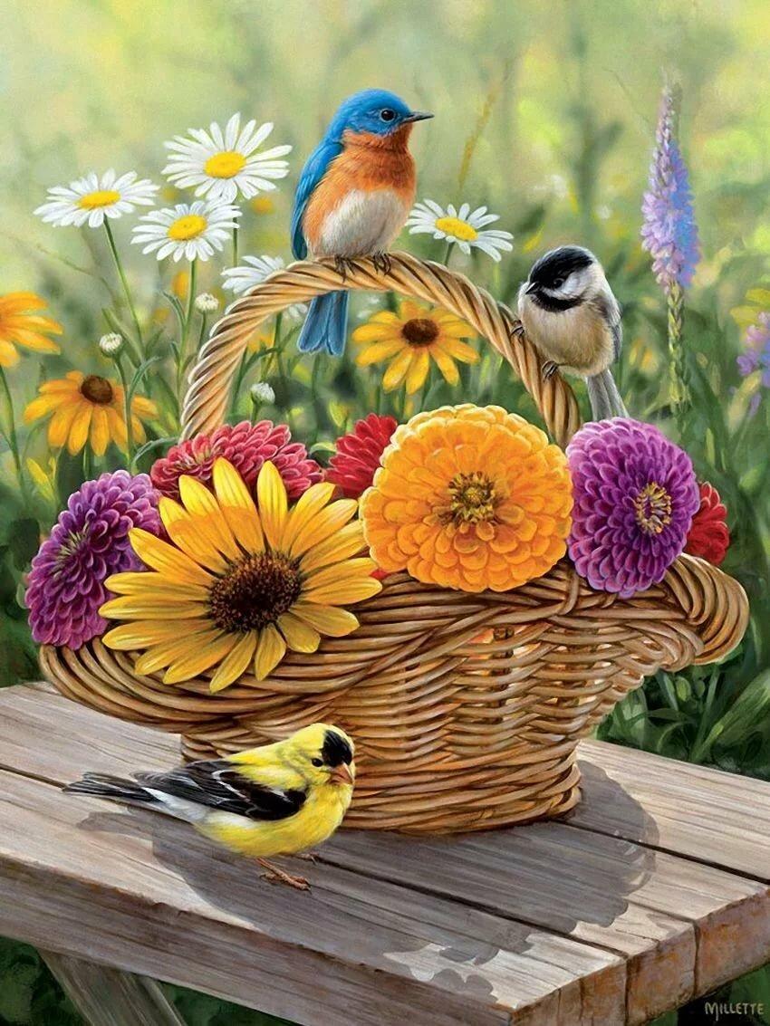 Открытки природа хорошего дня