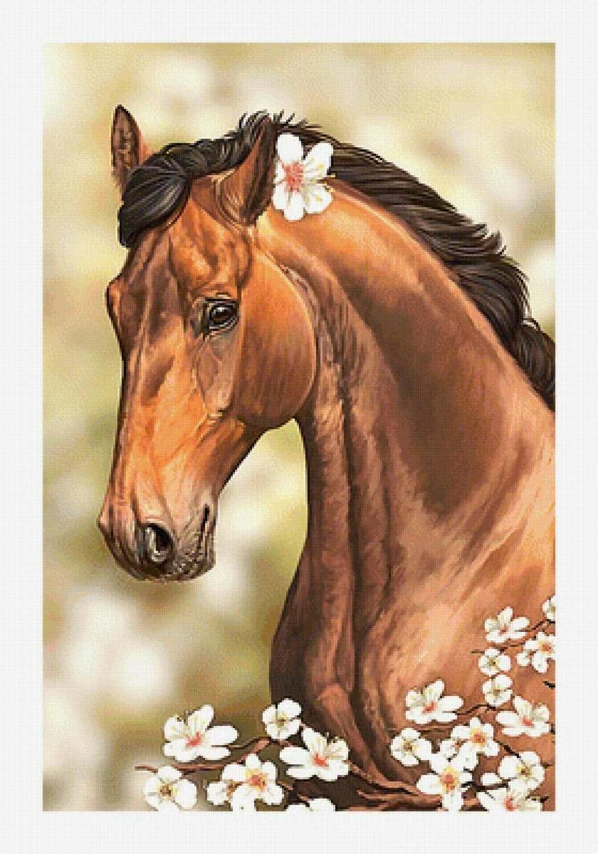 Кони с цветами картинки