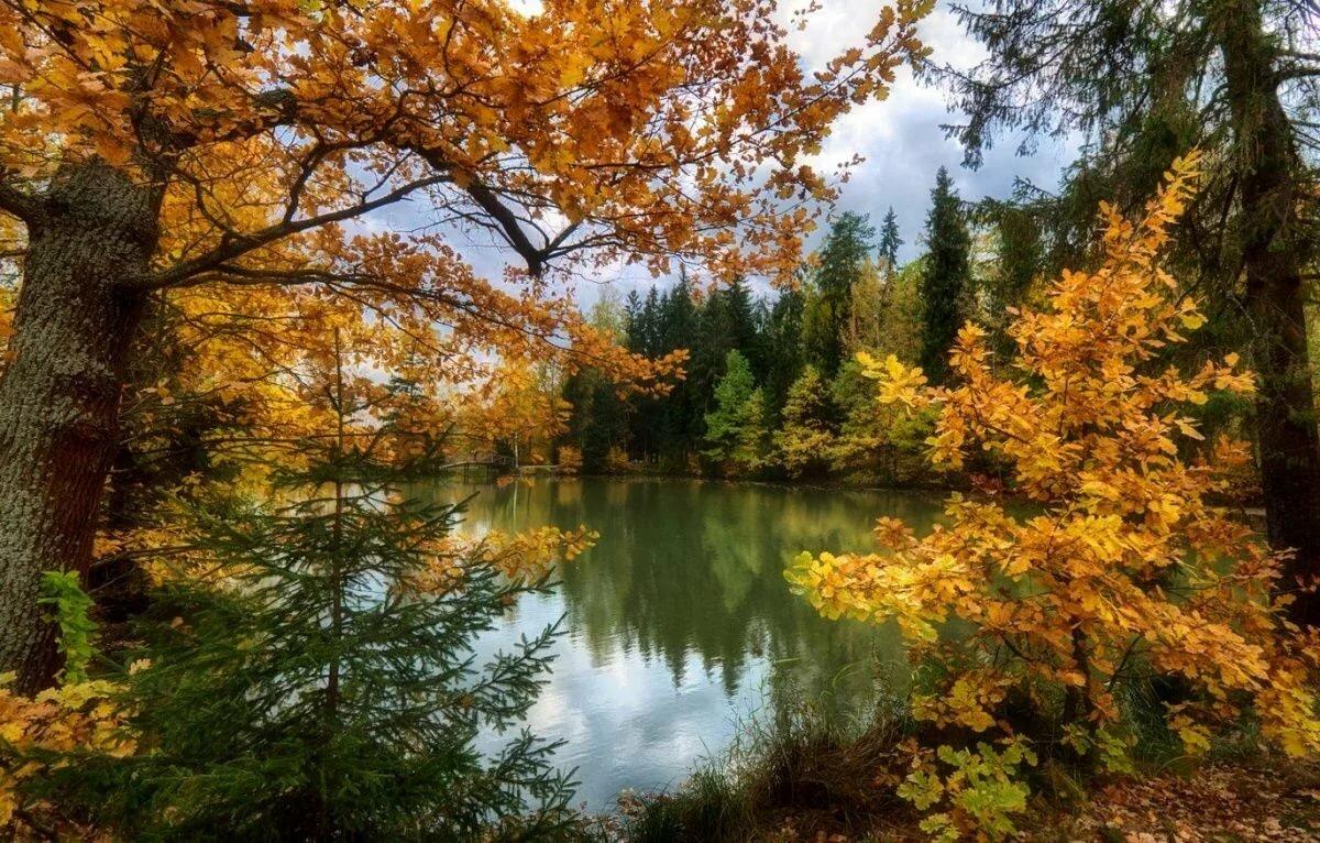 Изображения осени картинки красивые пейзажи