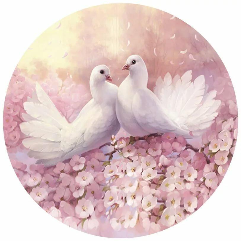 савченко преобразилась свадебные картинки с голубями и кольцами некоторая