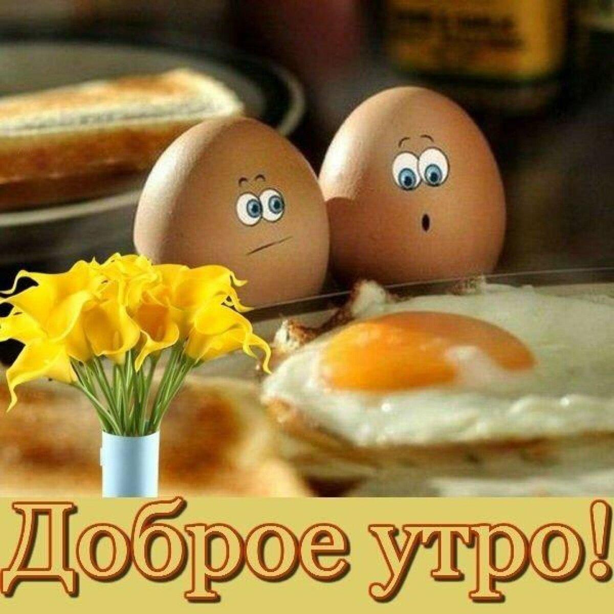 Прикольные и смешные пожелания доброго утра