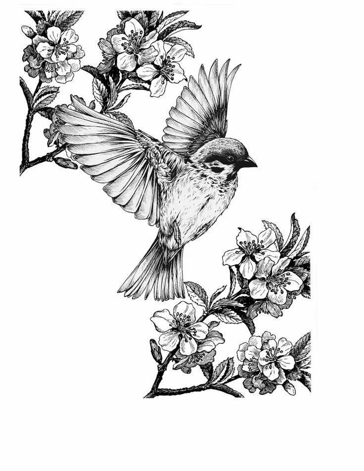Картинки птичек для татуировки