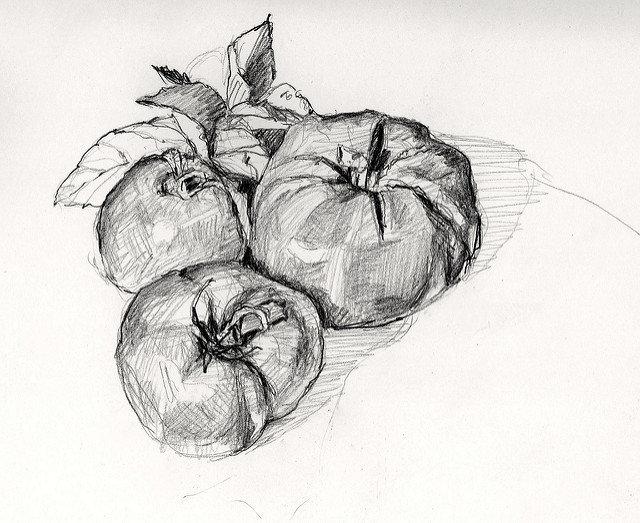 Картинки нарисованных фруктов и овощей карандашом