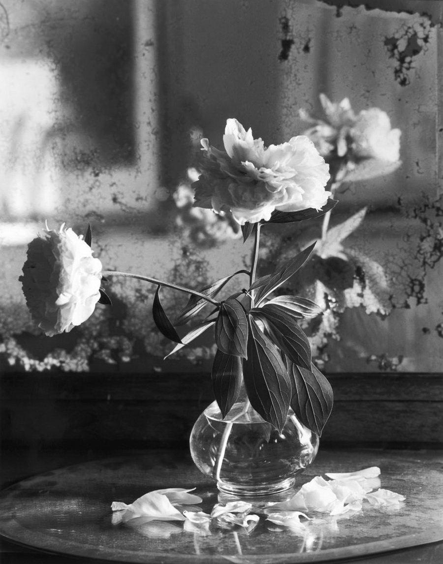 Как красиво сфотографироваться с корзиной цветов раз