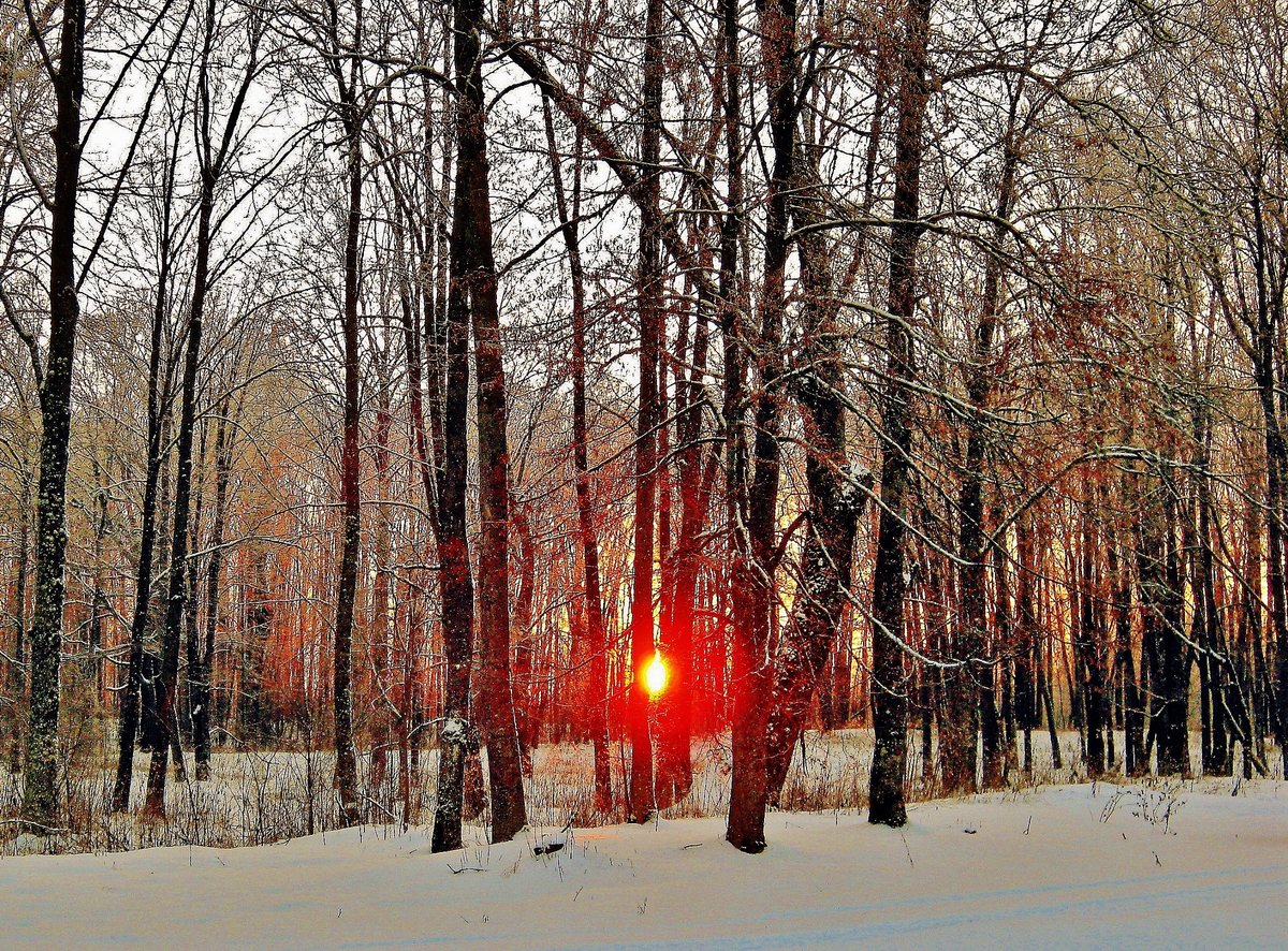 Картинки зимы в беларуси