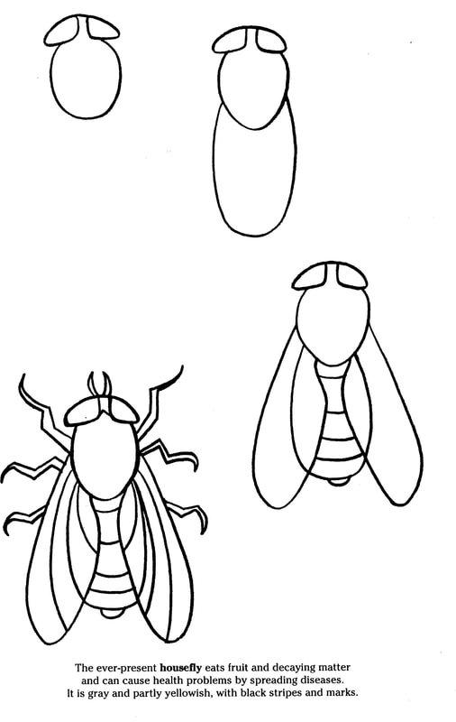 Рисунок мухи цокотухи поэтапно