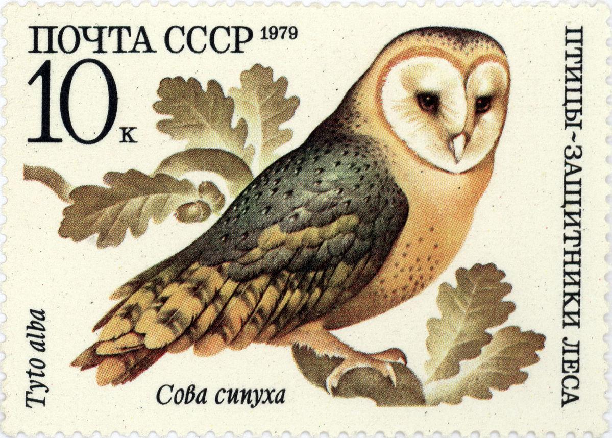 Картинка марка для детей