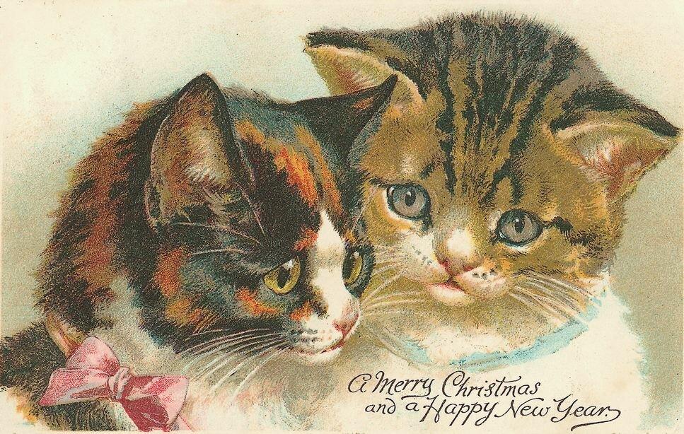 перед старинная открытка котенок срок