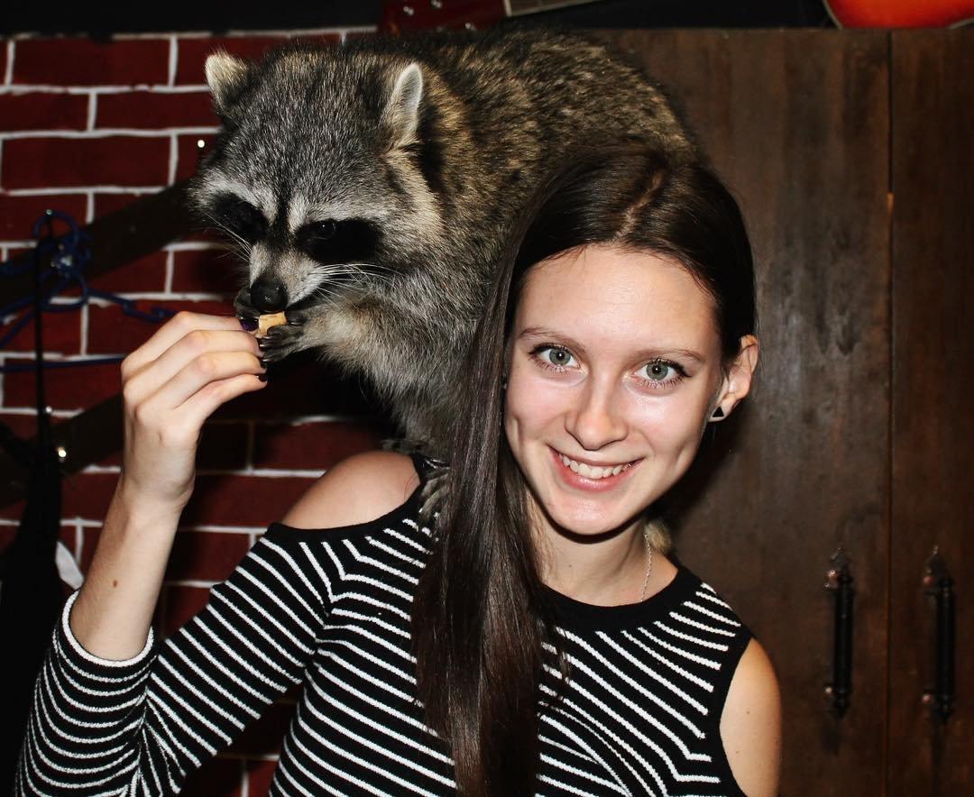 модные картинки с енотом крупнейший польский