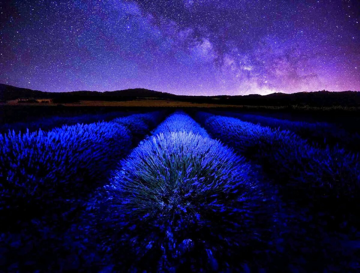 Картинки синяя ночь последнее