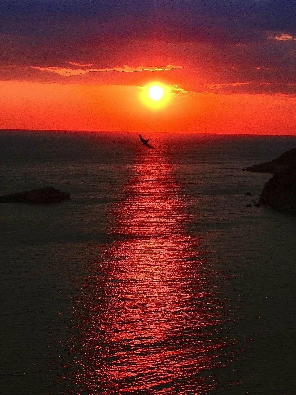 Картинки заката моря