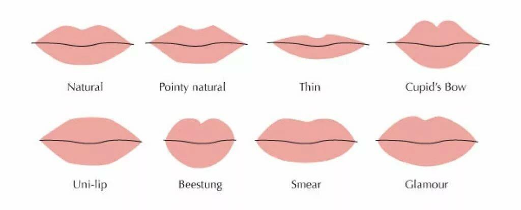 Захотела секса половые губы разновидность в картинках латинские