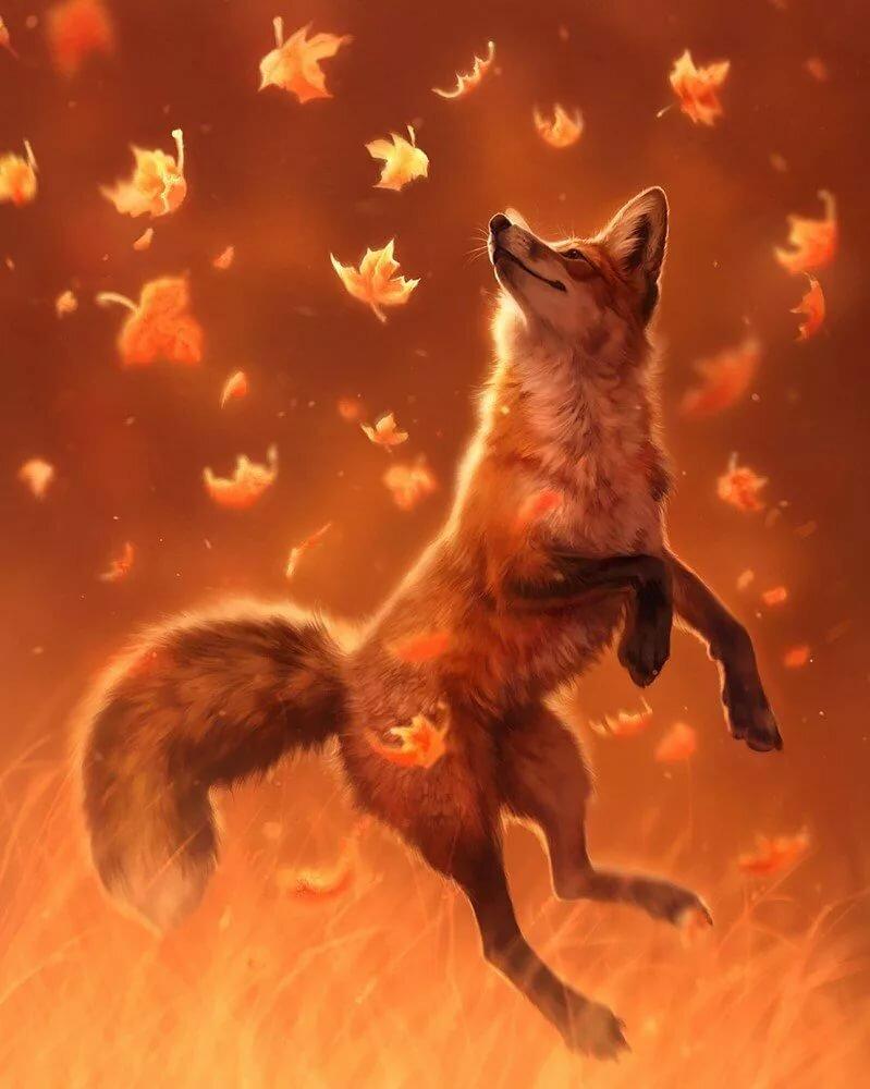 чем приходится лисы красивые картинки эпичные фото