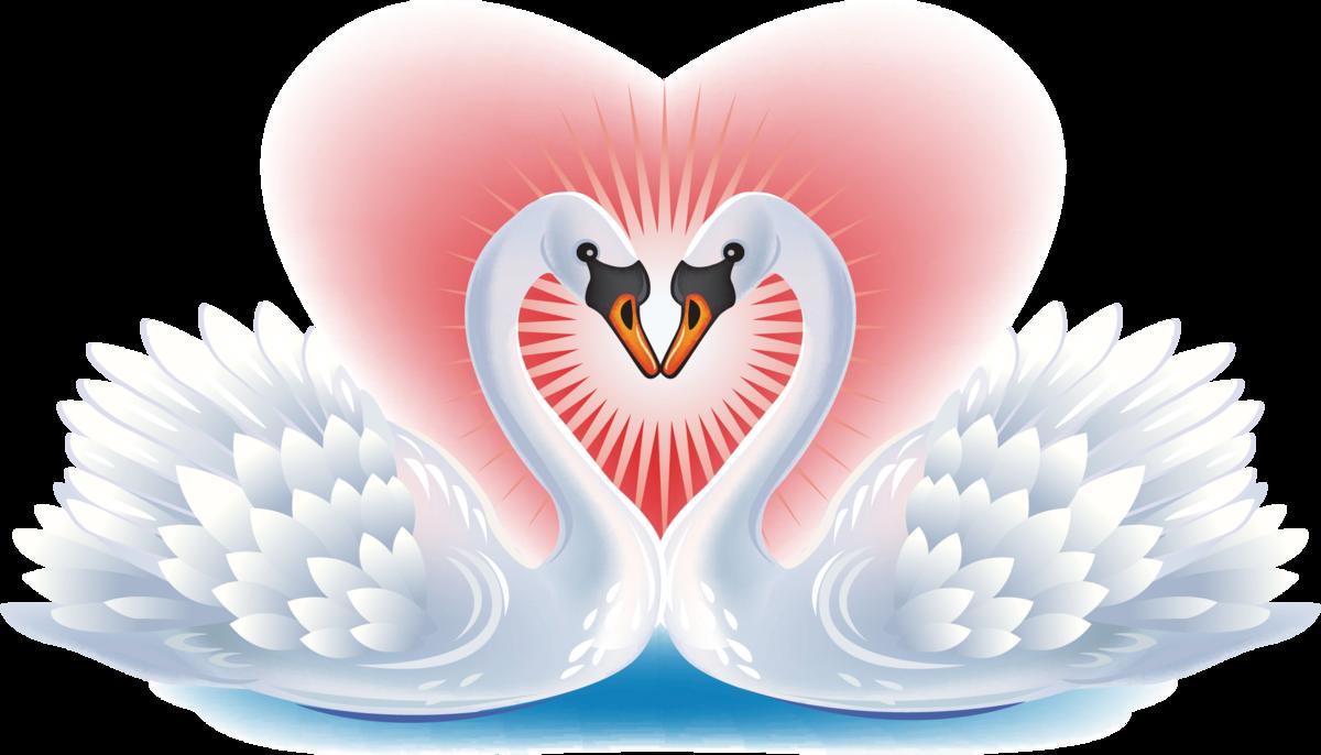 много рецептов картинки с сердцами и голубями того момента прошло