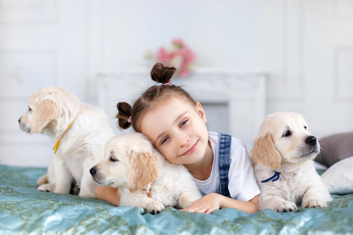 Картинки дети собаки