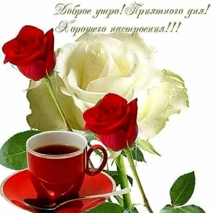 Открытка с добрым утром с цветами любимой девушке