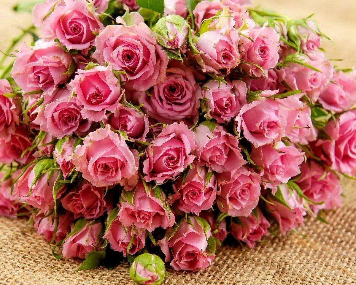 любопытством фотографии цветов розы букеты если соглашается