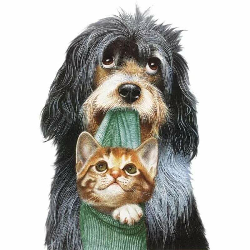 Праздник, прикольные картинки с собаками и кошками нарисованные