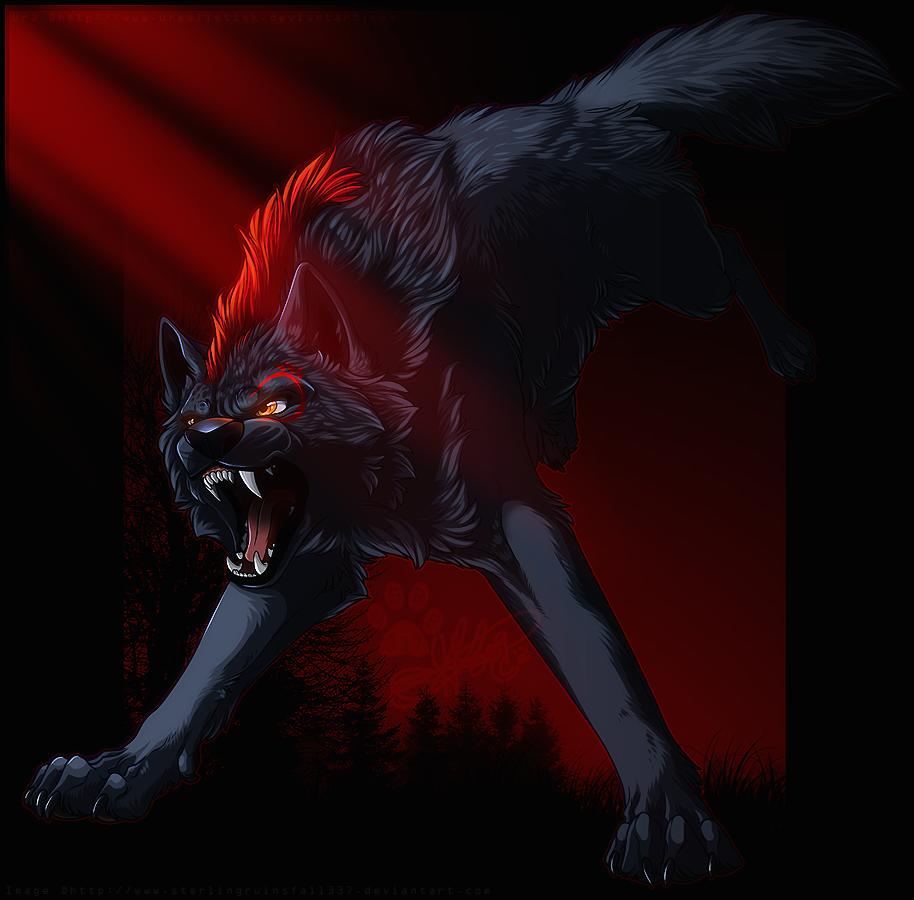 картинки черные волки красными глазами это логично, зная