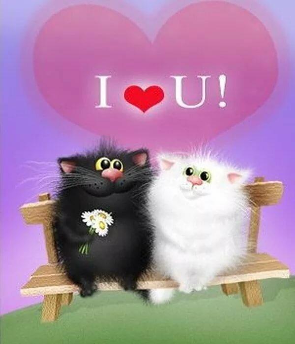 Открытки люблю тебя с кошками, английский язык
