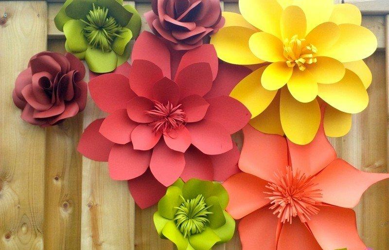 Цветов, цветы для оформления зала