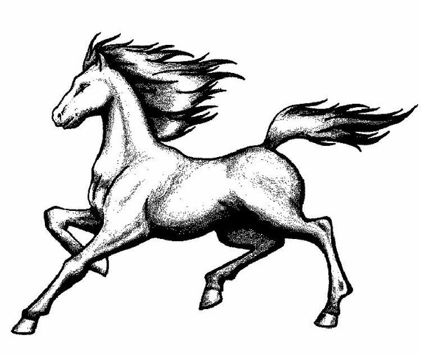 Running Mare Horse coloring page from Horses category. Select from ... | 505x600