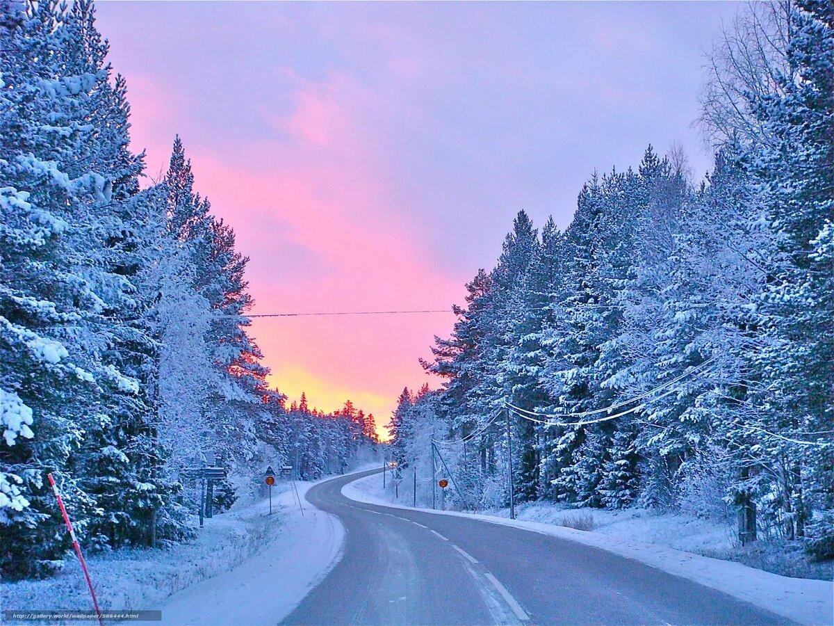 картинки зимнего леса с дорогой как сотрудник предприятия
