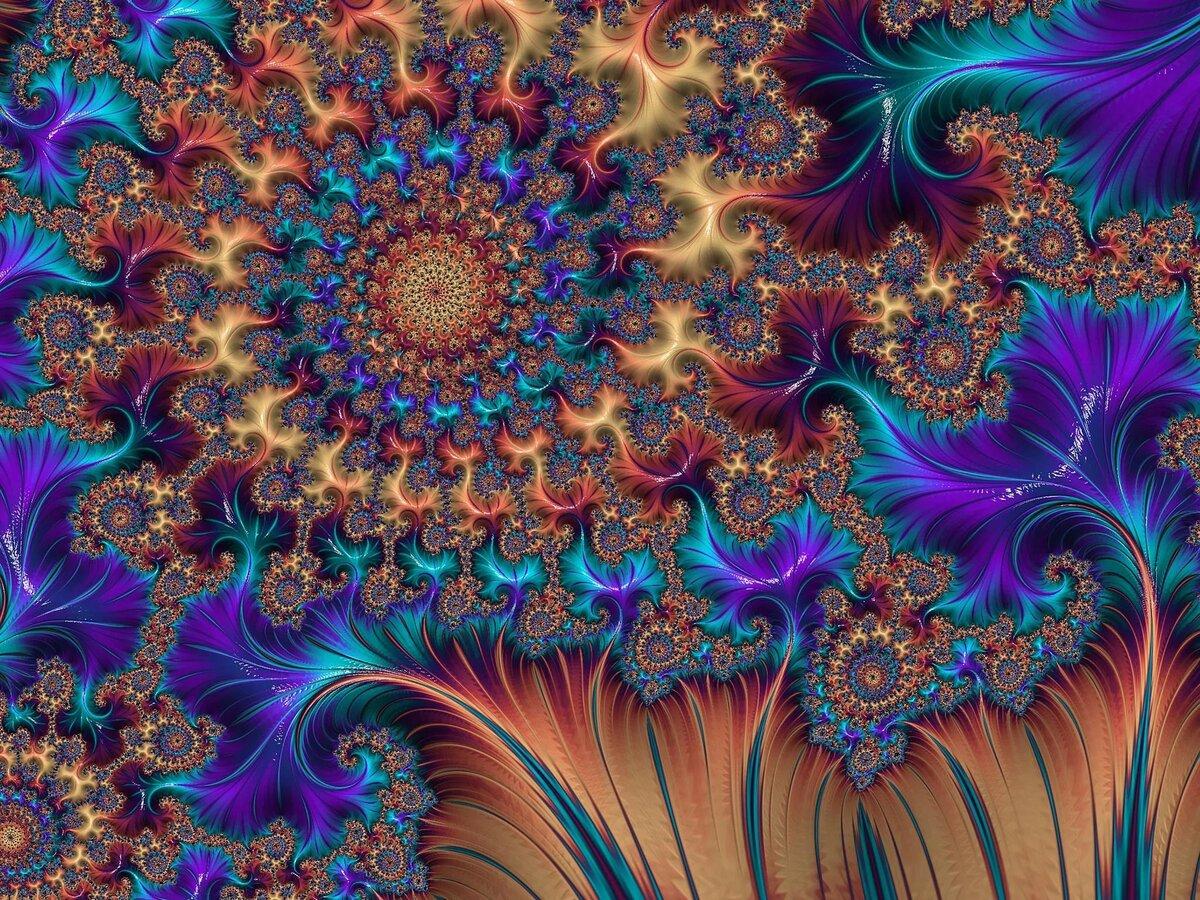 Разновидности рябчиков цветов с фото моррисон