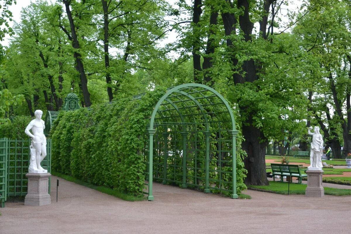 хозяин оформление летнего сада картинки с пояснениями стоит