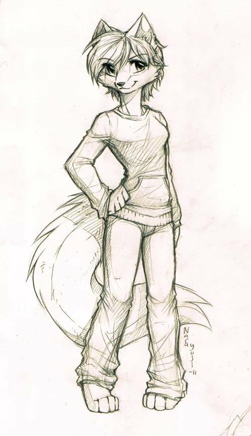 Картинки для срисовки фурри волки