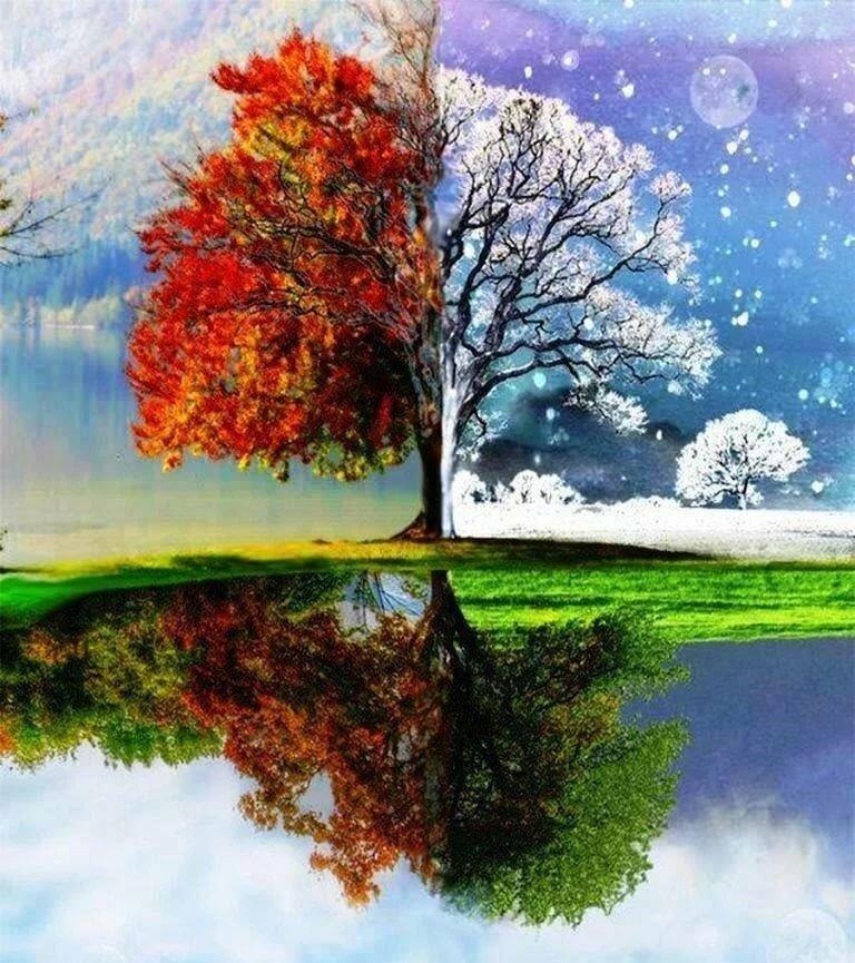 Картинки лето зима осень