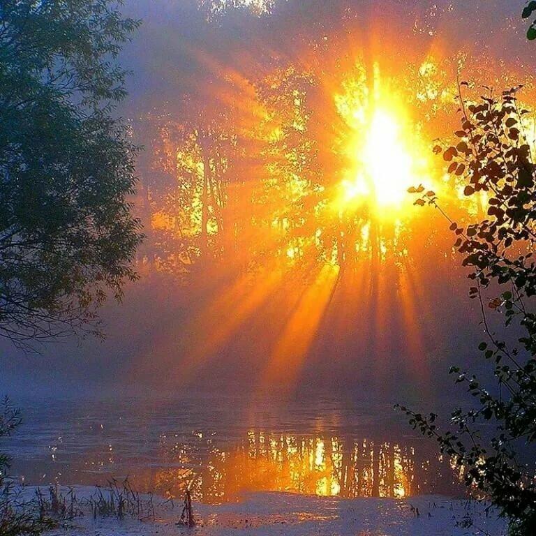 Солнце проснулось картинки