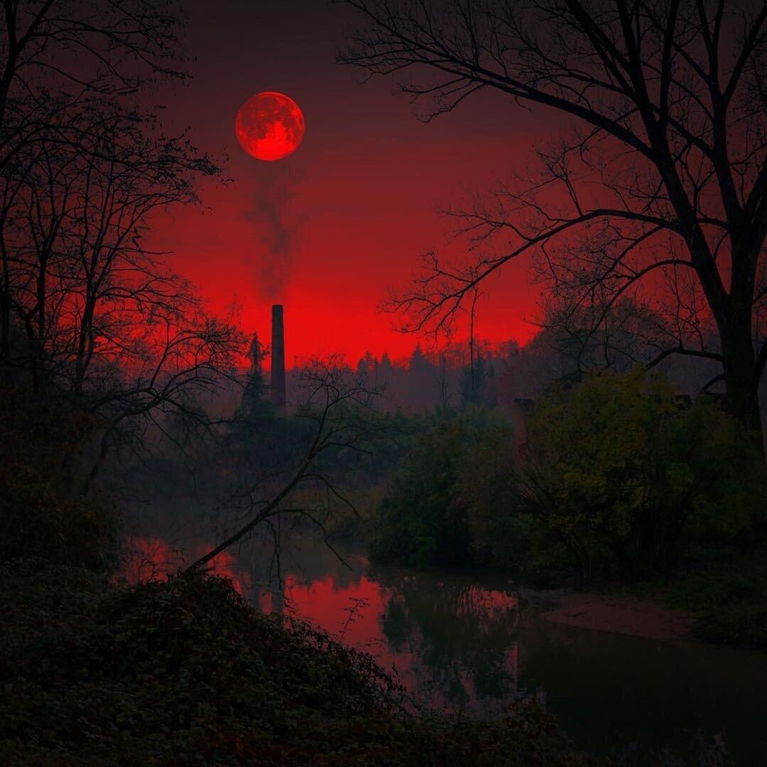 картинка кровавой ночи того