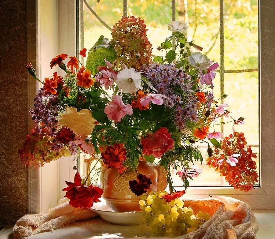 красивые картинки окно с цветами дизайна искусств