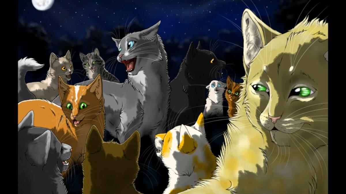 Коты воители картинки все