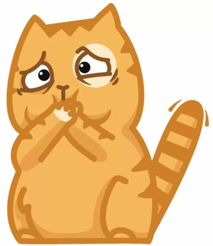 Стикеры в вк картинки кота персиками
